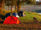 Campground Site Search